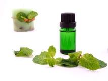 Óleo do aroma no fundo branco Foto de Stock