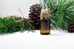 Óleo dos pinhões Óleo do cedro em um fundo de madeira Óleo útil com vitaminas fotos de stock