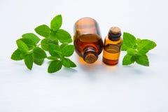 Óleo essencial da hortelã natural em uma garrafa de vidro com pasto da hortelã fresca fotografia de stock