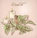 Óleo essencial e velas da manjericão Imagens de Stock Royalty Free