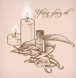 Óleo essencial e velas do Ylang-ylang Fotos de Stock