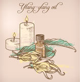 Óleo essencial e velas do Ylang-ylang Imagem de Stock Royalty Free