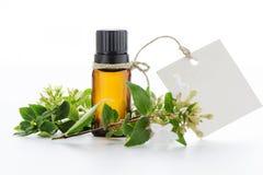 Óleo essencial, etiquetas vazias e flores Imagem de Stock
