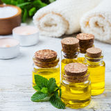 Óleo essencial orgânico com as folhas de hortelã verdes, conceito dos termas Foto de Stock