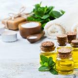 Óleo essencial orgânico com as folhas de hortelã verdes, conceito dos termas Fotografia de Stock Royalty Free