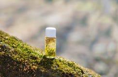 Óleos essenciais para a aromaterapia Imagem de Stock