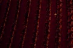 Ópera de Monnaie del La, Bélgica Foto de archivo libre de regalías