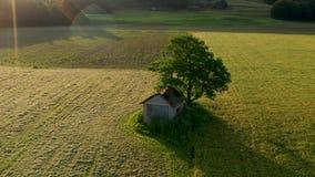 Órbita aérea sobre granero viejo con el tejado dañado, derrumbado debajo de un árbol grande en paisaje rural almacen de video
