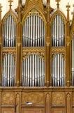 Órgão de tubulação Imagem de Stock