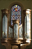 Órgão pequeno Imagem de Stock