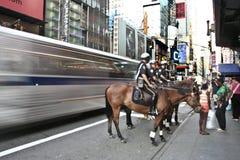 Ônibus contra o cavalo Fotografia de Stock Royalty Free