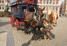 Ônibus de Antuérpia Foto de Stock Royalty Free
