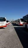 Ônibus de Dubai alinhados no estacionamento Imagens de Stock