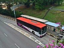 Ônibus em Singapura Imagem de Stock