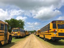 Ônibus escolares amarelos fotografia de stock