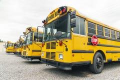 Ônibus escolares no parque de estacionamento fotos de stock royalty free