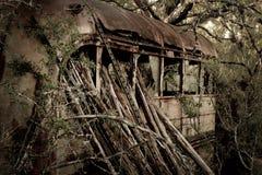 Ônibus nas madeiras Imagem de Stock Royalty Free