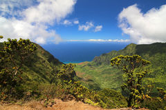 Ö av Kauai, Hawaii Arkivfoton