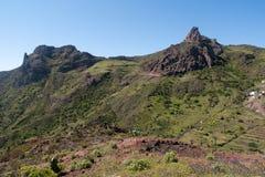 Ö av La Gomera, terrasslandskap Arkivfoton