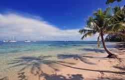 Ö av Moorea, Tahiti franska Polynesien Fotografering för Bildbyråer