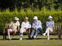Ö AV TAGGAR, SUSSEX/UK - SEPTEMBER 11: Åskådare på en gräsmatta Arkivbilder