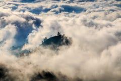 Ö av träd ovanför molnen arkivbilder