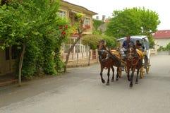 Ö för hästvagnsprinsar Royaltyfria Bilder