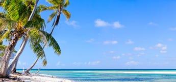 Ö i franska Polynesia Arkivfoto