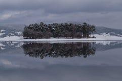 Ö i sjön med snö och den lilla skogen Arkivbilder