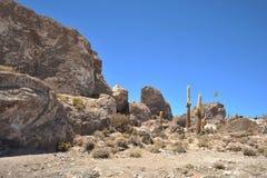 Ö Inca Wasi - kaktusö arkivfoto