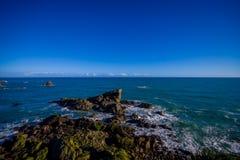 Ö nära udde Foulwind, sikt från den uddeFoulwind gångbanan på skyddsremsakolonin, Tauranga fjärd New Zealand Royaltyfria Bilder