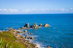 Ö nära udde Foulwind, sikt från den uddeFoulwind gångbanan på skyddsremsakolonin, Tauranga fjärd New Zealand Fotografering för Bildbyråer
