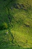 Göra grön slingan på kullen Arkivbild
