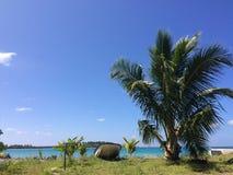öar Fotografering för Bildbyråer