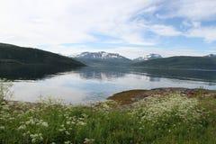 Öar av Kvaloya och Senja, Norge Arkivfoton