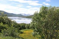 Öar av Kvaloya och Senja, Norge Royaltyfria Bilder