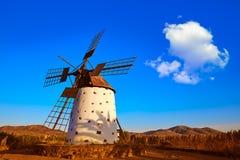 Öar för kanariefågel för väderkvarnEl Cotillo Fuerteventura Royaltyfria Bilder
