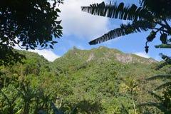 Öar för Te Manga bergRarotonga kock Arkivbilder