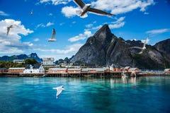 Öar Norge för Lofoten skärgårdöar arkivbild