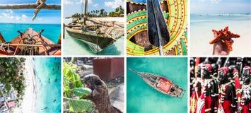 Öar som är borttappade i havet, primitivt liv, collage Arkivbilder