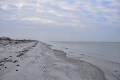 Öde höst för sandig strand 50 skuggor av grå färger Arkivbilder