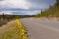 Öde lantligt huvudvägYukon territorium Kanada Arkivbilder