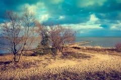 Öde sandig strand Royaltyfri Foto