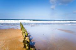 Öde Sandy Beach under blå himmel Royaltyfria Bilder