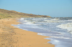 Öde strand av det Azov havet Fotografering för Bildbyråer