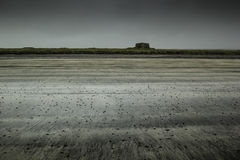 Öde strand i arktisken Arkivbilder