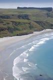 Öde strand i Dunedin Royaltyfria Bilder