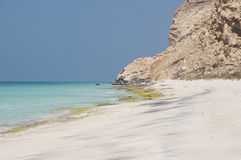 Öde strand. Socotraö Royaltyfri Foto