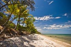 Öde tropisk strand arkivfoton