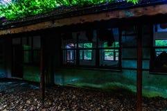Ödelagd byggnad fördärvar i skogsmark av turkisk bygd fotografering för bildbyråer